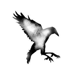 crow3_sm